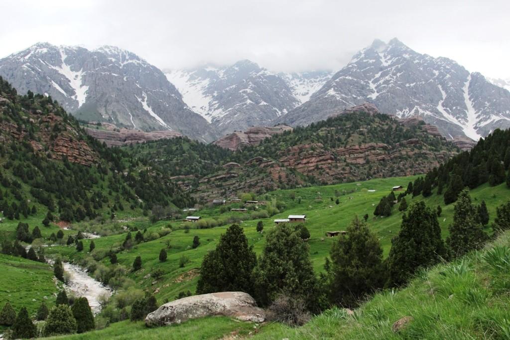 24 Village Pashmikuhna