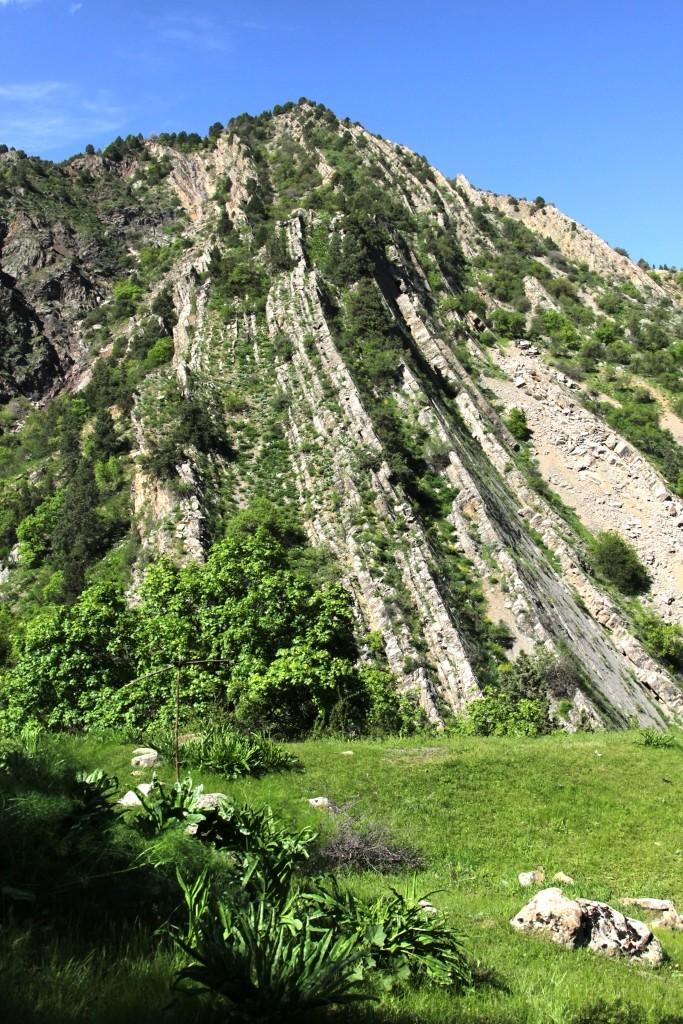 4 Sherkent Valley. Cliff dinosaur footprints.