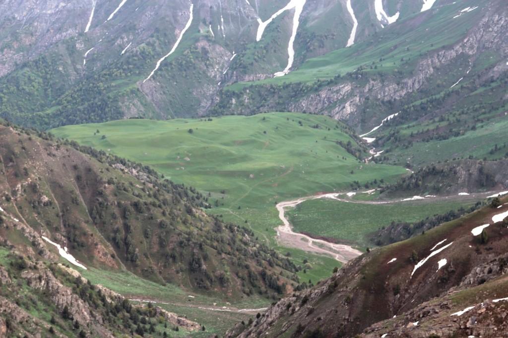 65 Plateau Parmin.