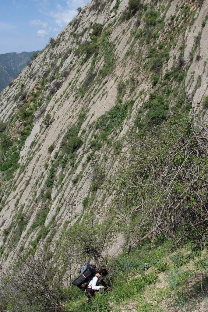 8 Sherkent Valley.