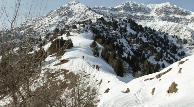 05.02.2019. Попытка восхождения на вершину Сурхну.