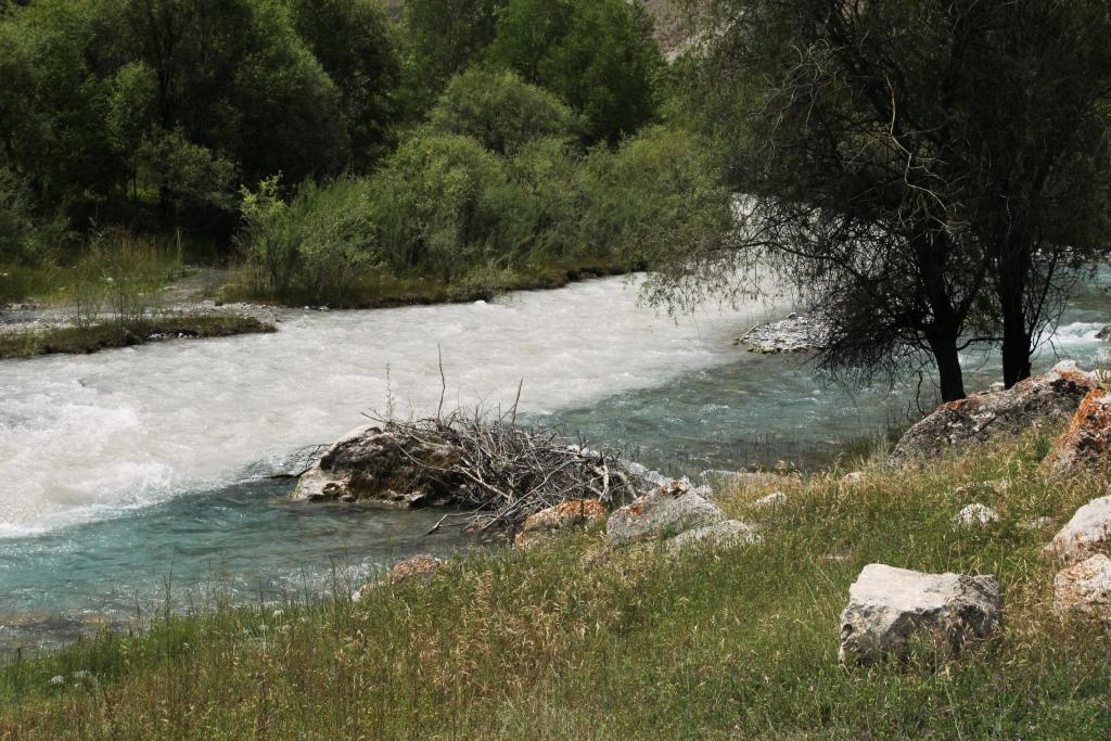 0078Верховья реки Имат